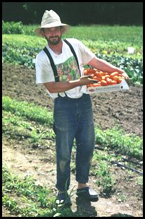 Photo of Brendan Taaffe standing in his farm field with a flat of tomatoes.